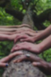 shane-rounce-682783-unsplash_edited.jpg