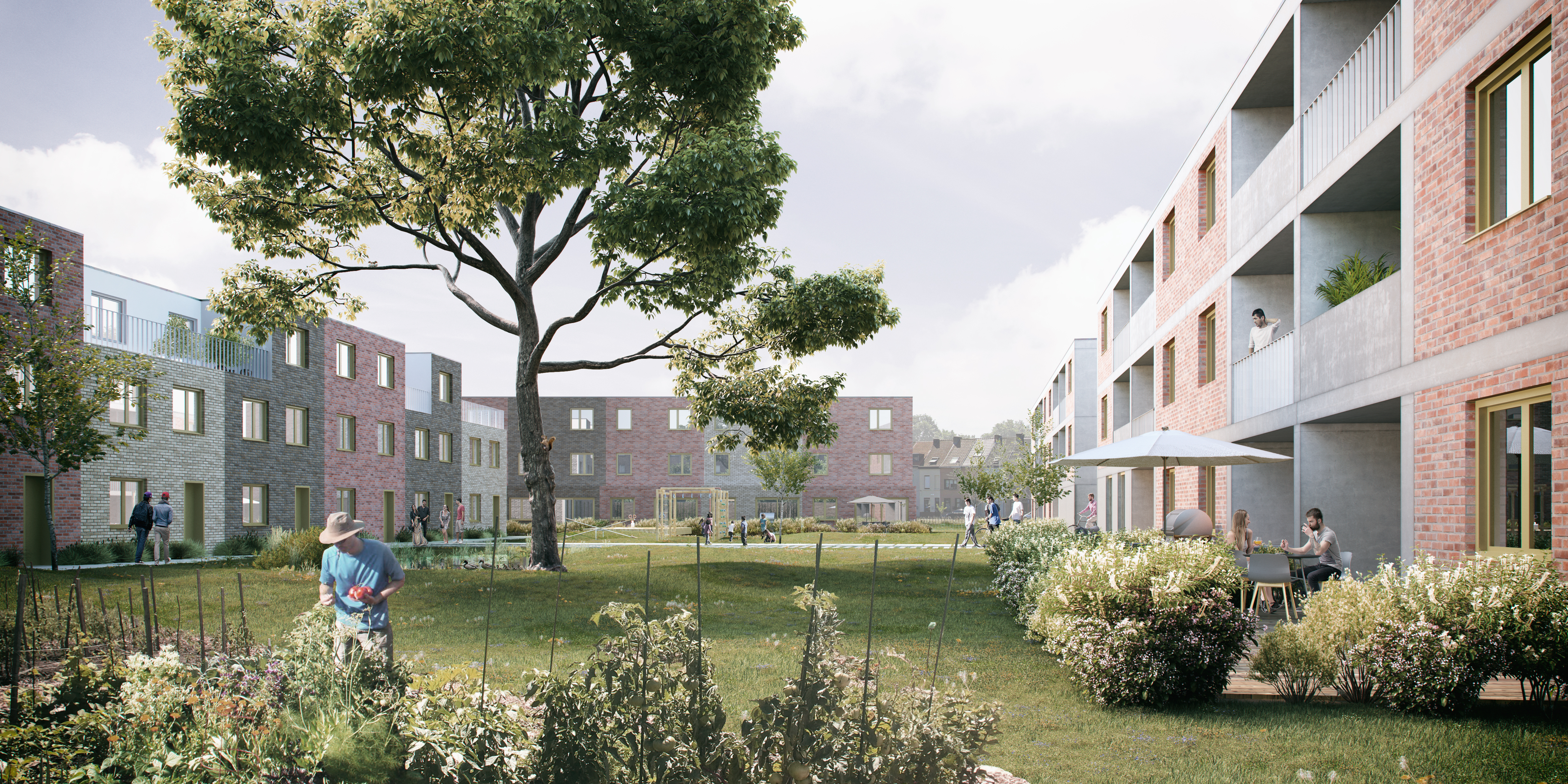Martens Van Caimere Architecten_CLT_02