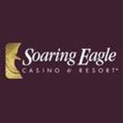 soaring-eagle.jpg