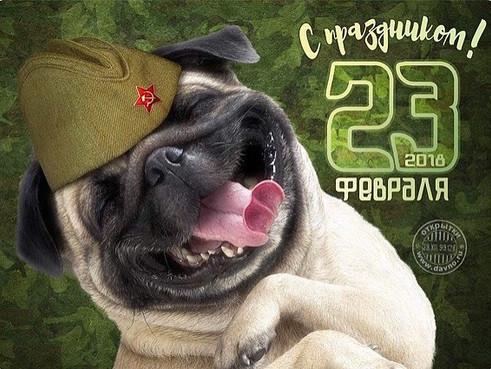 Поздравляю Всех мужчин с Днем защитника Отечества !!!!!!!!