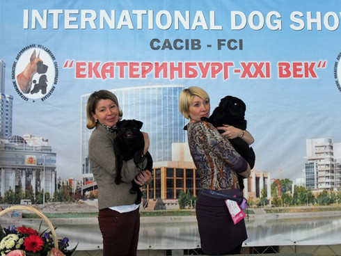 ЕКАТЕРИНБУРГ-XXI ВЕК NTERNATIONAL DOG SHOW CACIB FCI
