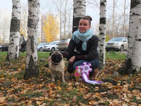 Монопородная выставка собак породы Мопс  ранг ПК