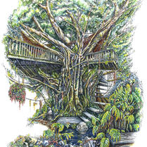 30.) Tree House Color Card(15 in Stock)