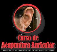 Curso de Acupuntura Auricular