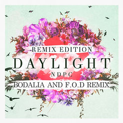 Daylight Remix.jpg
