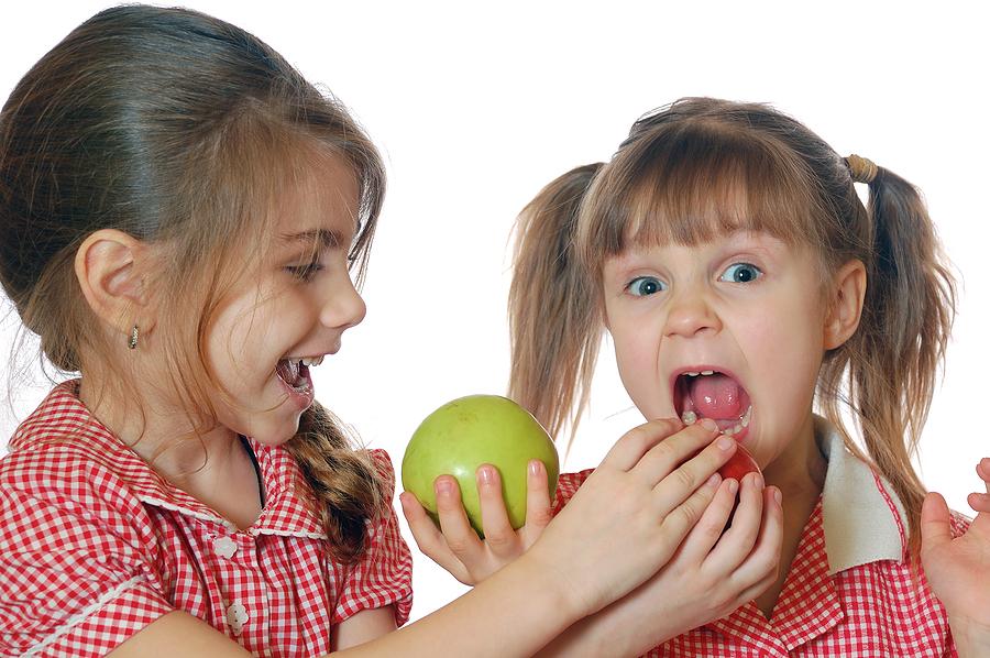 CE Fun Apples