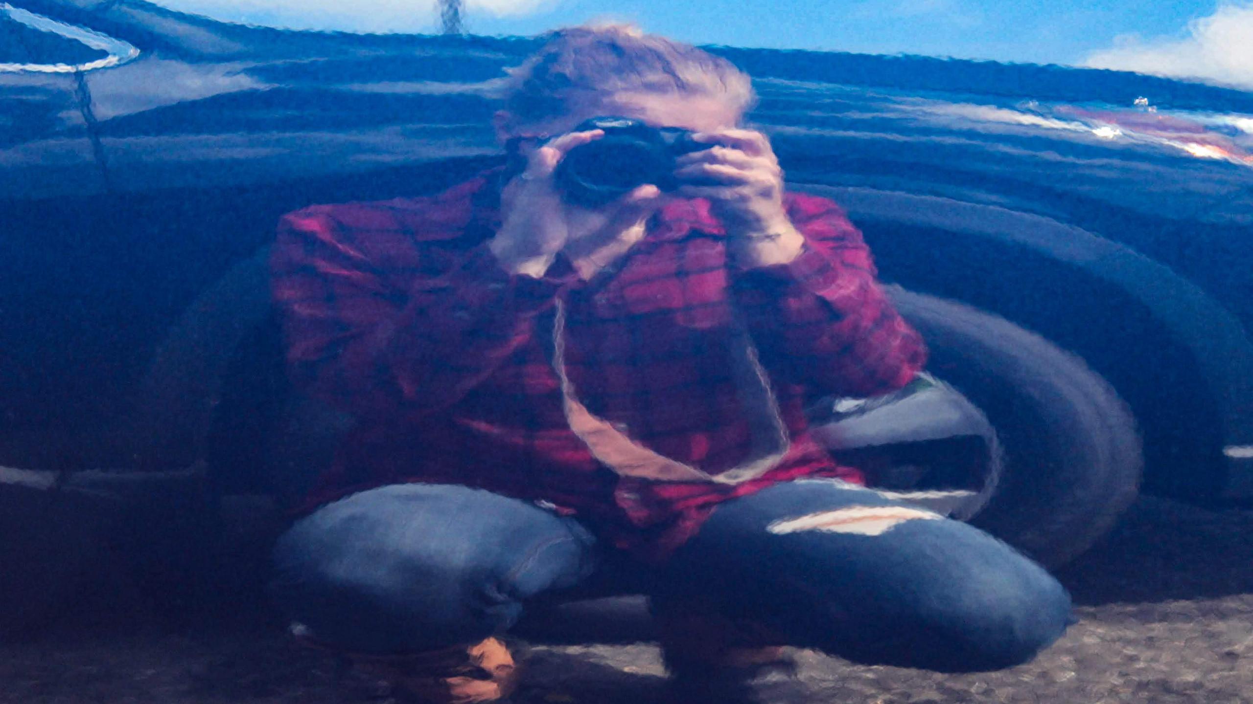 Self-Portrait in a Car Dealership (F