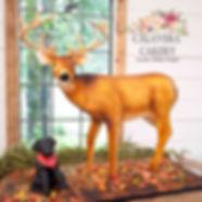 Tanner deer small.jpg