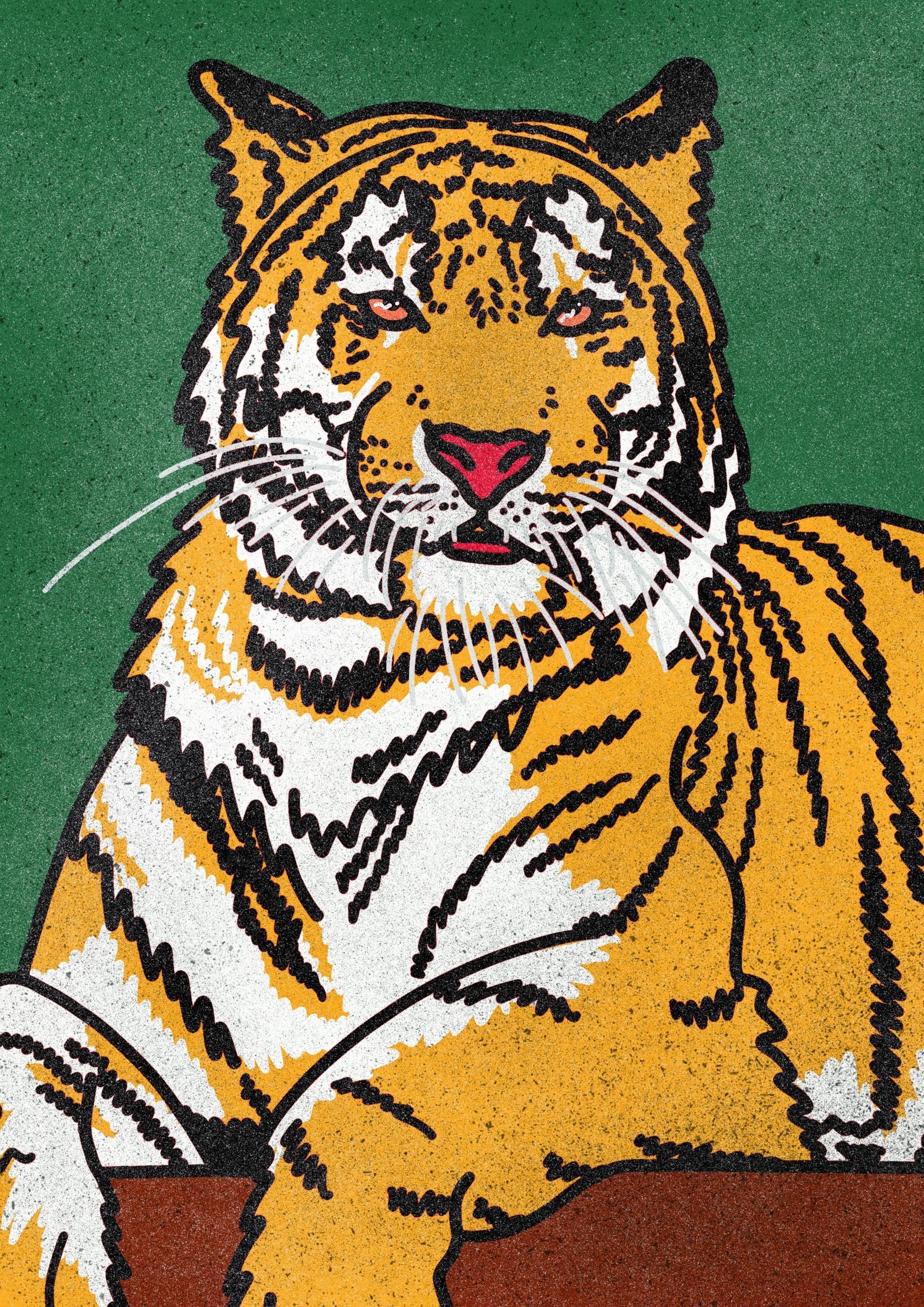 Tiger King illustration