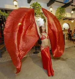 Belly dancer Latin dancer