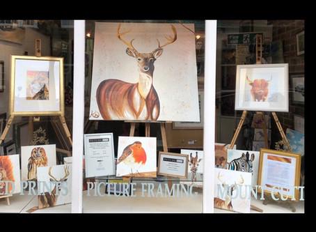 Tring High Street Gallery Window.