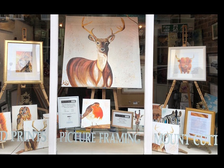 Tring High Street Gallery Window.