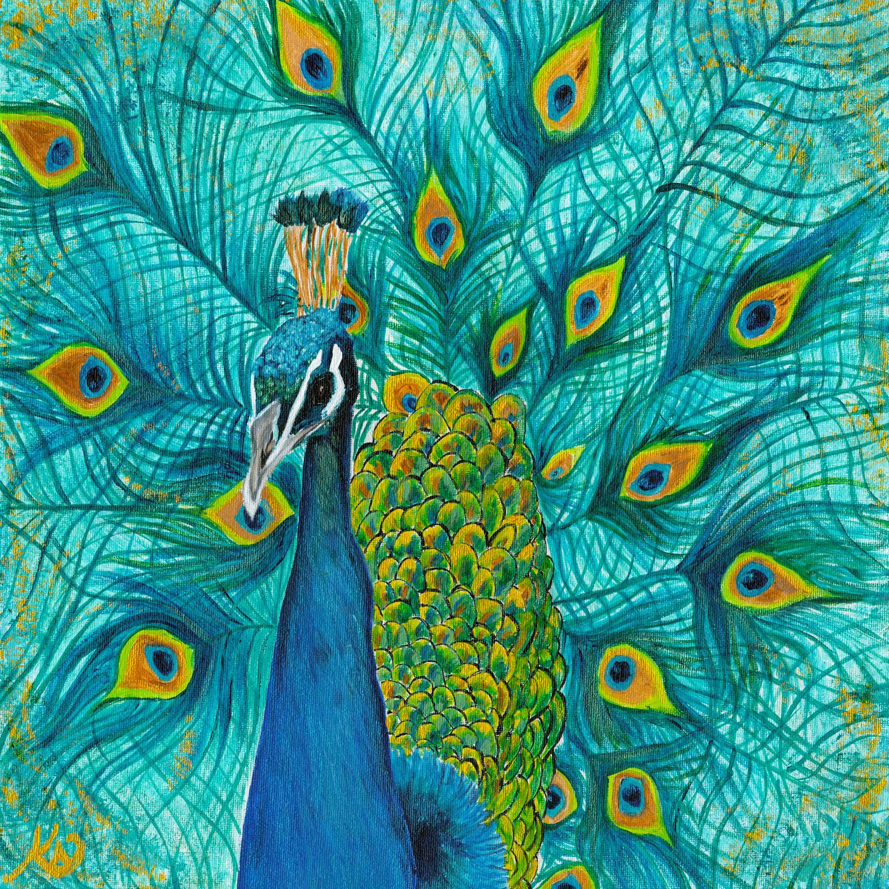 Peacock with Fanned Tail Feathers.Original Acrylic on Canvas, 16x 16 inches.