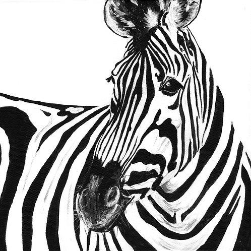 Monochrome Zebra