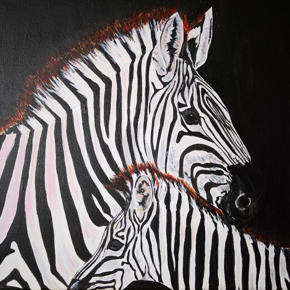 Mother and Baby Zebra on Black. Original Acrylic on Canvas, 16 x 16''