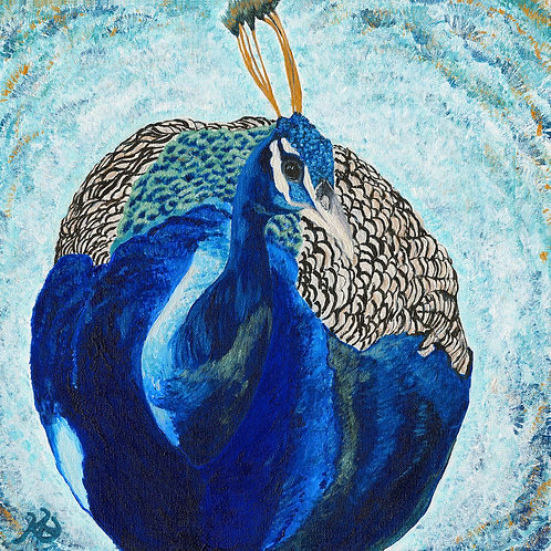 Peacock in Blues, Mounted, Limited Edition Print. 2 size options.
