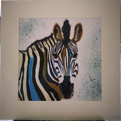 Zany zebra in gold and turquoise.