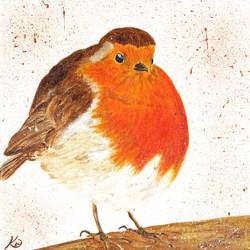 Rotund Christmas Robin