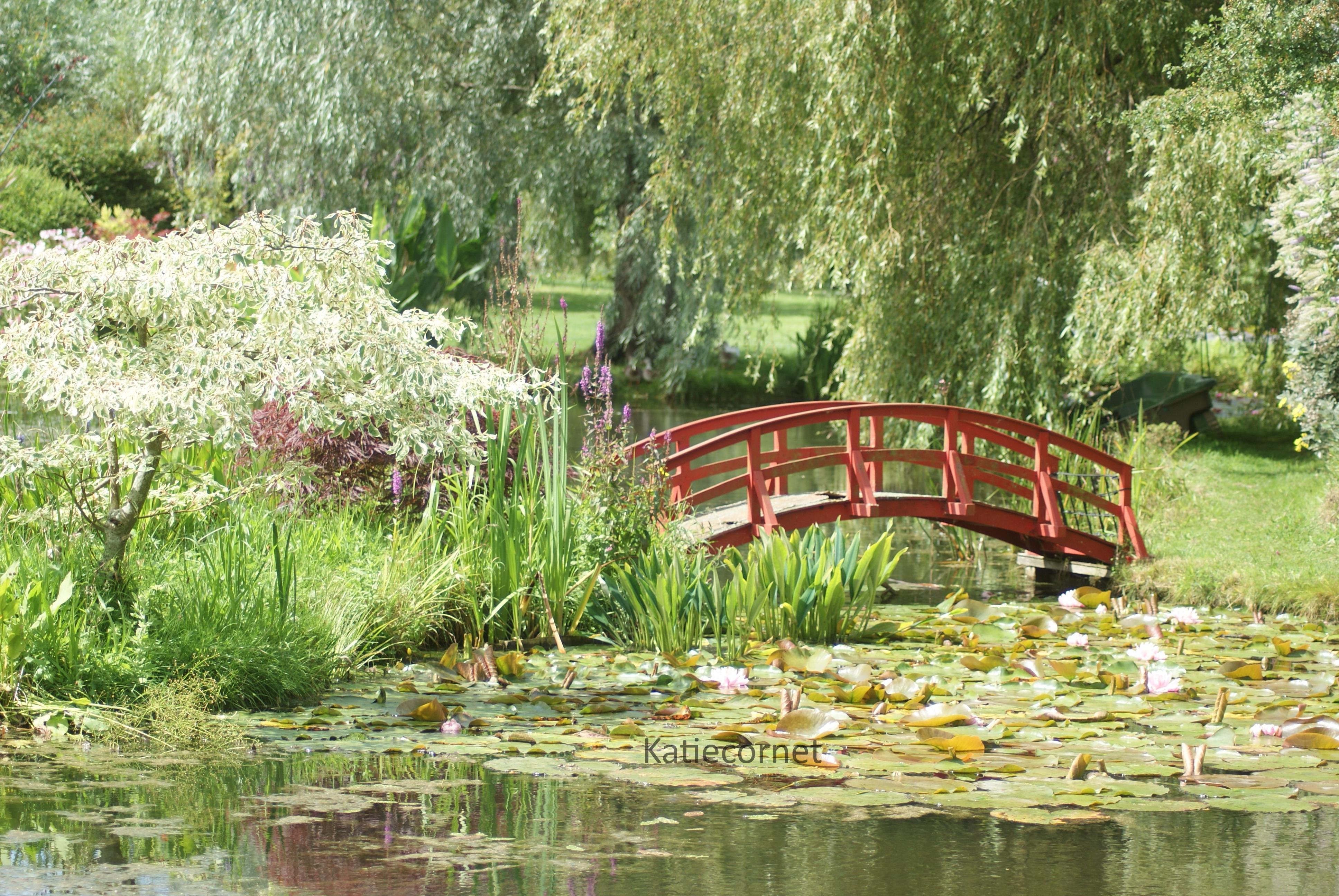 2,1.Watergardens in Dorset