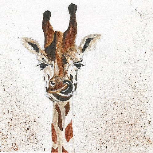 Munching Giraffe, Limited Edition Print. 2 size Options.