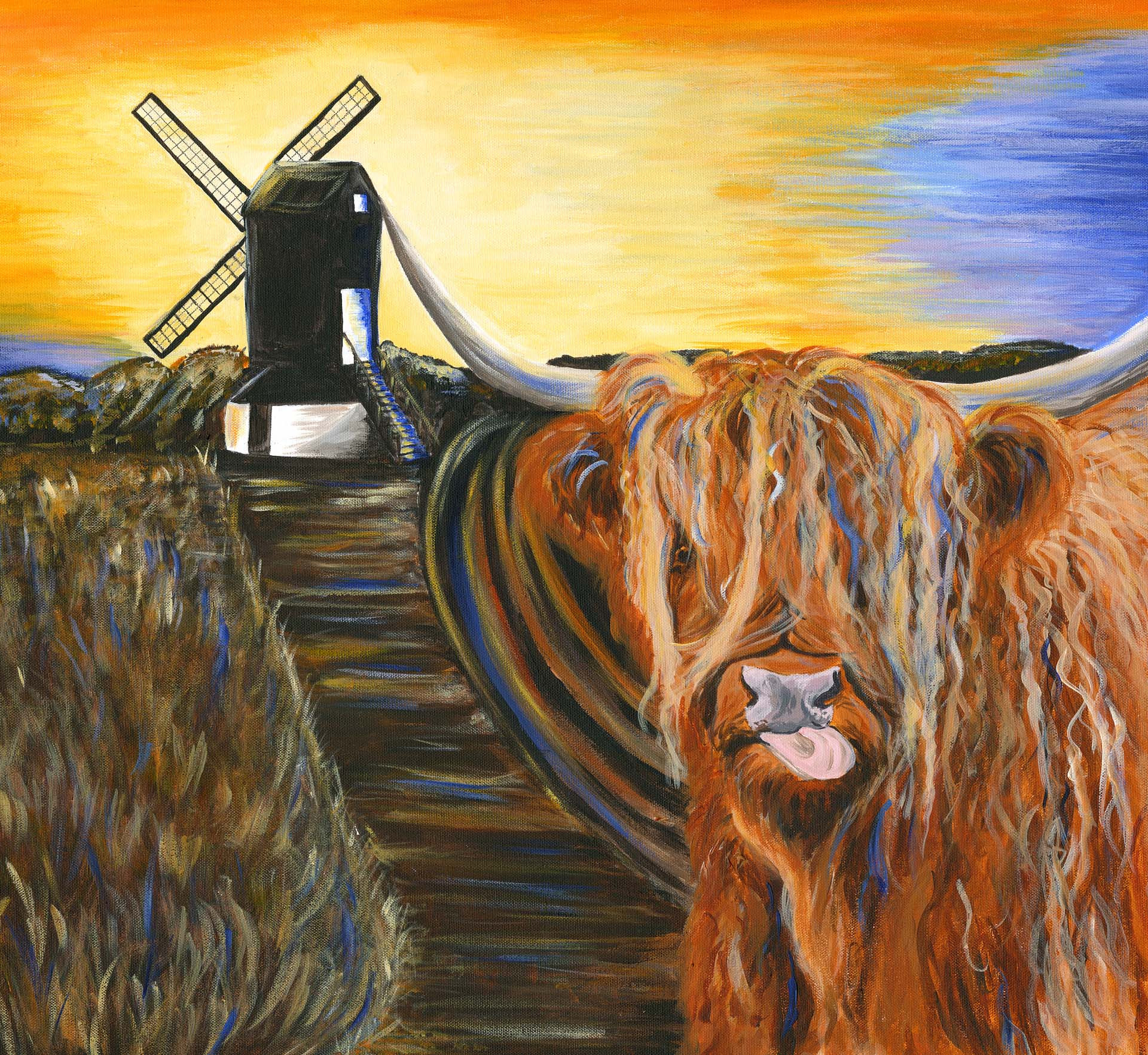 Highland Moo goes to Pitstone Windmill