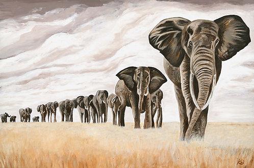 Elephants on Safari , Limited Edition Print.