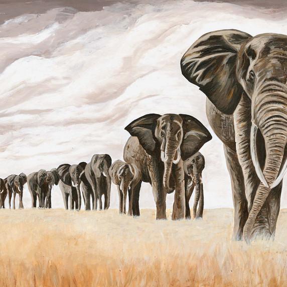 Elephants on Safari 80 x60 cm, Katie Nathan