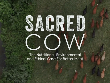 Holy Cow! You Have to Watch Sacred Cow!