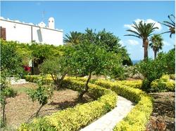 scopello garden.PNG