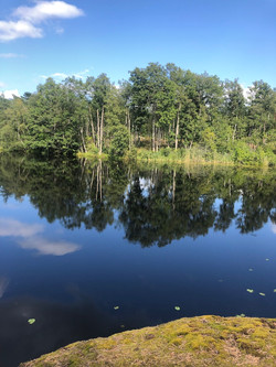My Lake