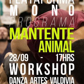 workshop valdivia.jpg