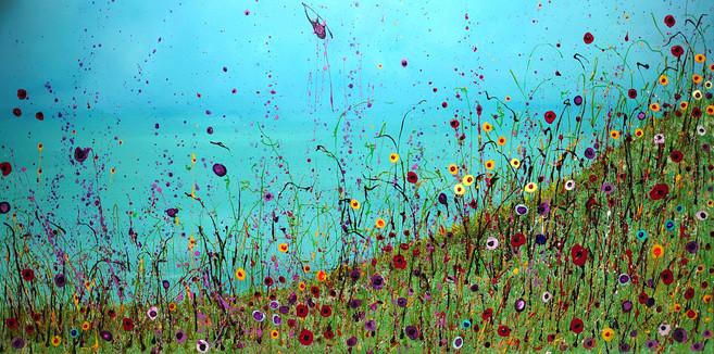 Dreaming of a Seaside Meadow