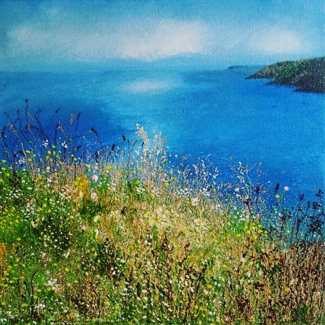 Cornish Coastal Meadow