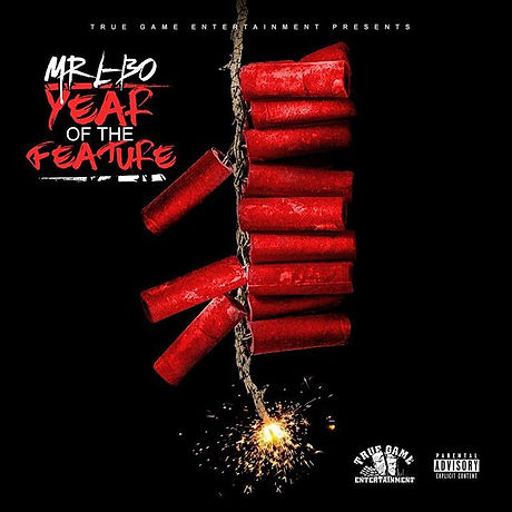 Mr L-BO, Year of the Feature Mixtape