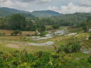 How to Get to Tana Toraja