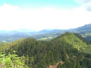 Desa Sangkaropi Bakal Jadi Desa Wisata di Toraja Utara, Ini Destinasinya