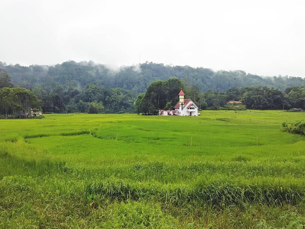 To this views, we have passed Palawa - Sesean - Pangli.