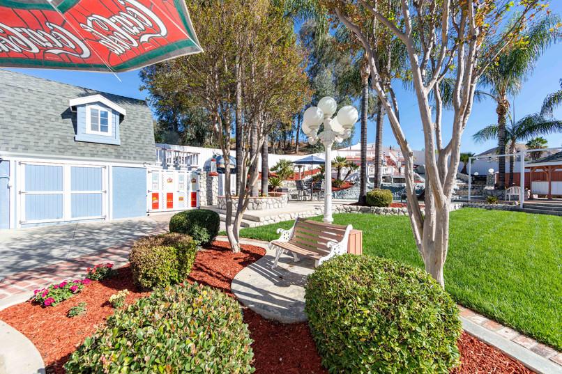 33200 Windtree Ave-backyard-34.jpg