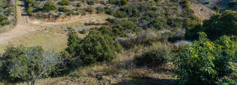 21146 Via Los Laureles-aerial-14.jpg