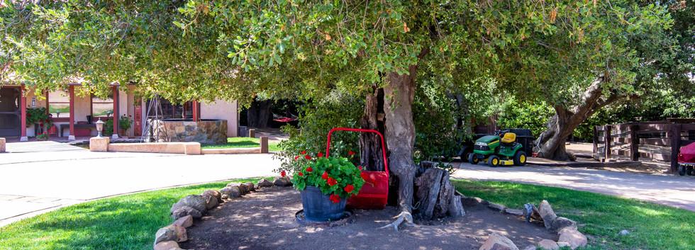 41225 Avenida De Los Posas-ext-27.jpg