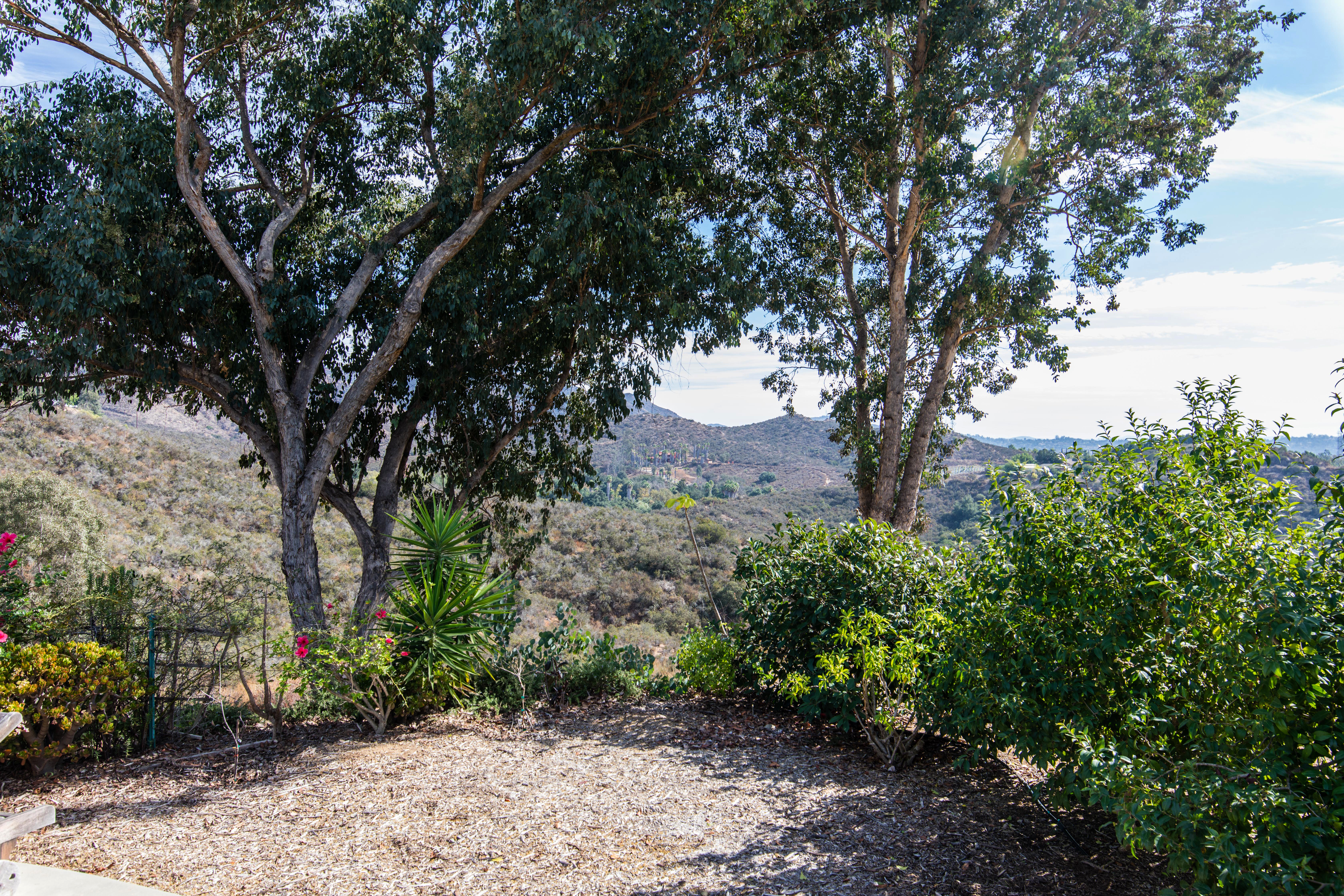 4404 E Sandia Creek Terrace-ext-12