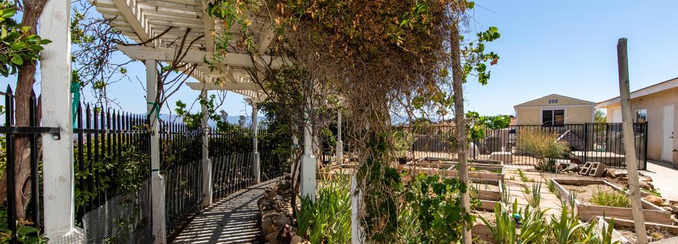 39845 Spanish Oaks Dr-ext-32.jpg