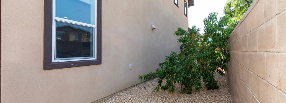 10908 Playa Del Sol-ext-15.jpg