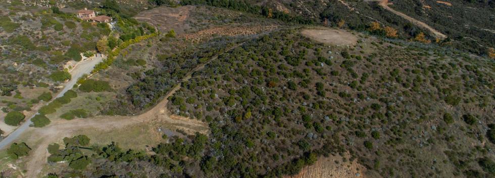 21146 Via Los Laureles-aerial-17.jpg