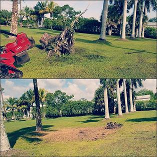PicsArt_03-21-09.29.18.jpg