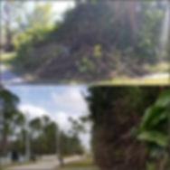 PicsArt_03-22-01.52.25.jpg