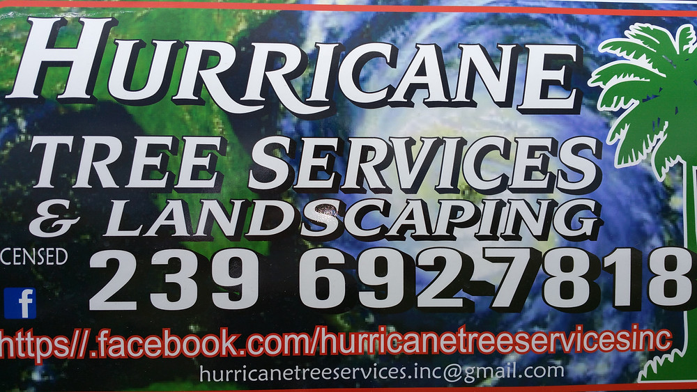 Hurricane Tree Services