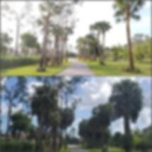PicsArt_02-25-11.20.30.jpg