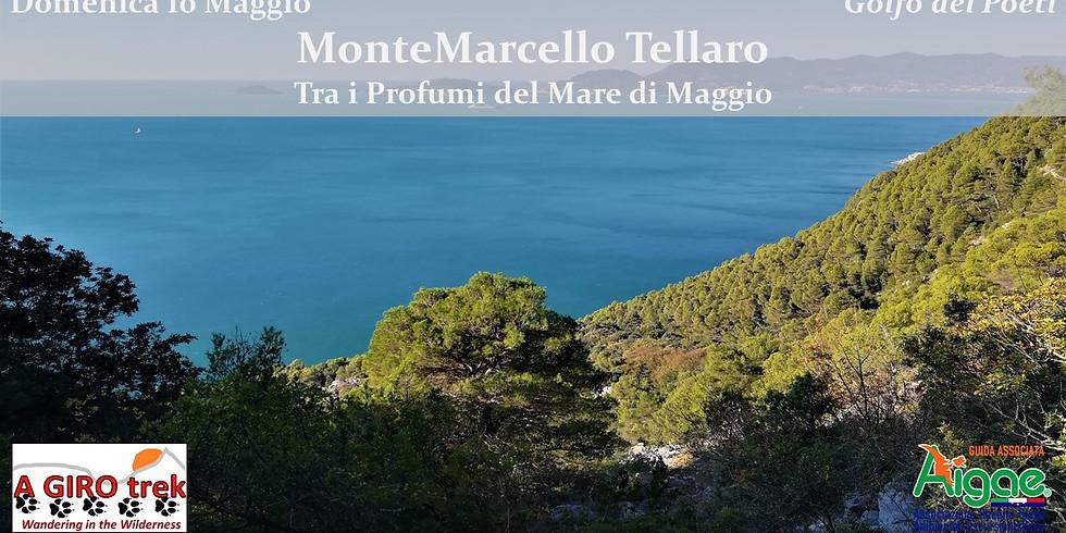 Montemarcello Tellaro