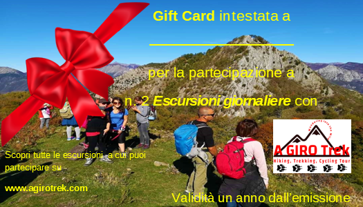 gift card 2 escursioni.png